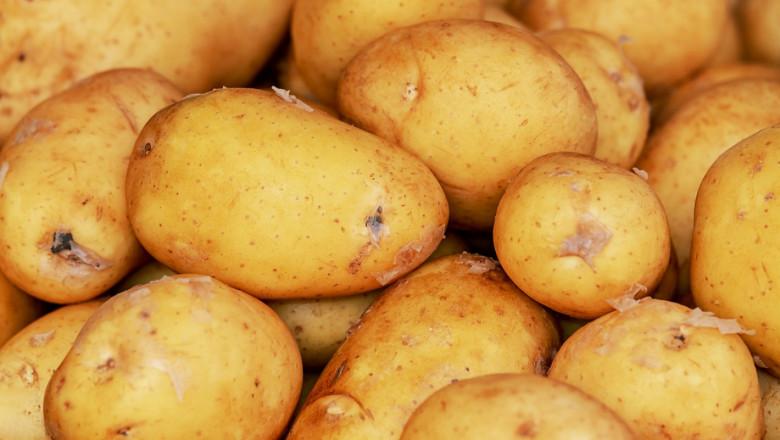 Ранно производство на картофи