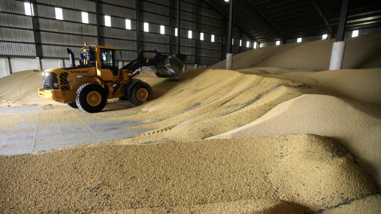 Борси: Цената на зърното продължава да потъва
