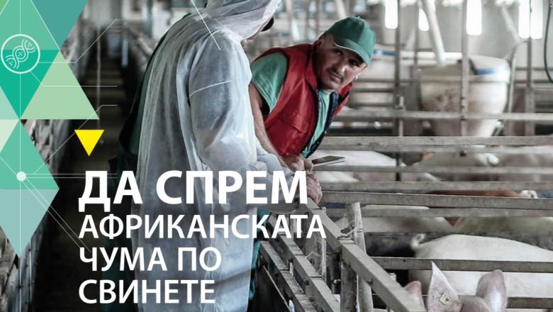 """""""Да спрем АЧС"""": Вижте изискванията към фермери и ловци"""