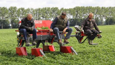 За първи път в света: Има как да се спасите от плевелите - Agri.bg
