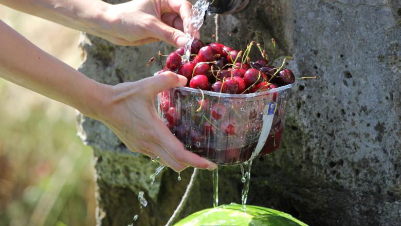 Фермери настояват за връщане на многодневните трудови договори