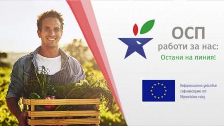 Онлайн семинар: Овощарство и зеленчукопроизводство в преходния период на ОСП