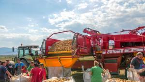 Как за картофокомбайн за 85 000 евро трябва да направиш инвестиция за 380 000 евро? - Agri.bg