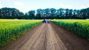 Казахстан проявява интерес към селекцията на Добруджанския земеделски институт