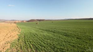 Земеделски терени се дават под наем в Шуменско