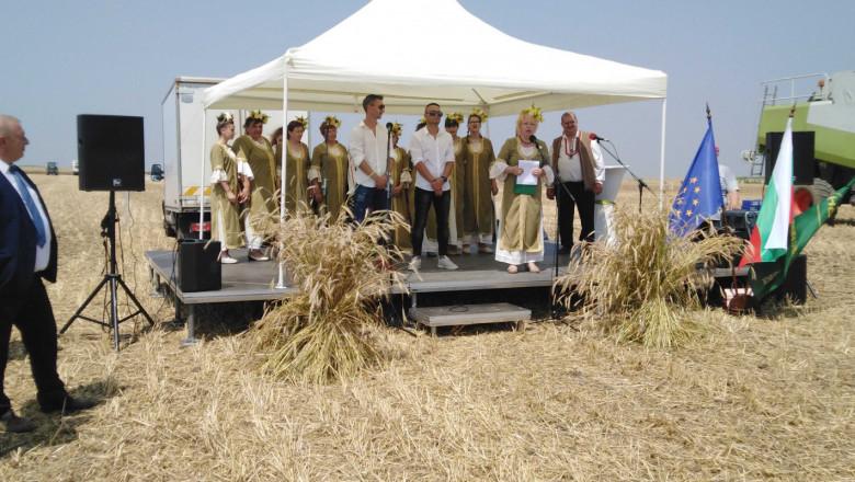 Пшеницата се очаква да достигне 5,7-5,8 млн. тона