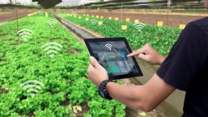Иновациите ще се насърчават отдолу нагоре, нуждите на фермерите са определящи