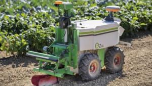Роботът Оз върши чудеса в градината