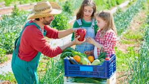 Растениевъди, запознайте се с правилата и изискванията за биопроизводство