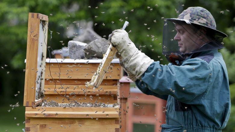 За пчеларите: 3 млн. лв. заради сушата през 2020 г.