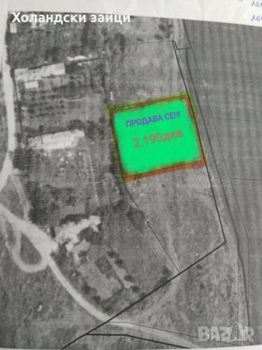 ПРОДАВАМ парцел с площ 2.190дка в село Ветрино, обл.Варна - Снимка 1