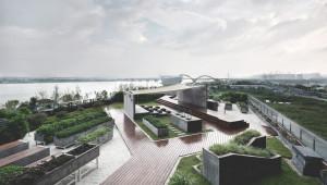 Градско земеделие на покрива в снимки - Снимка 6