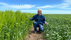 Михаил Драганчук: Ефективното прилагане на No-Till подобрява почвеното плодородие