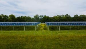 Как се събират две реколти със слънчева енергия