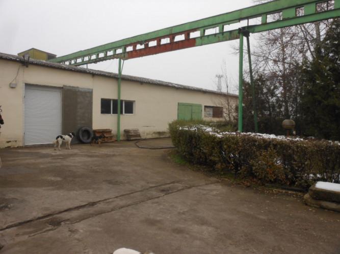 Фабрика за Производство и Търговия с олио и слънчогледово ма - Снимка 8