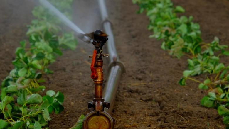 Браншът изригна: Източват последните капитали за земеделие