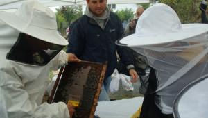 Бъдещи пчелари се учат от опита на по-големите - Снимка 3