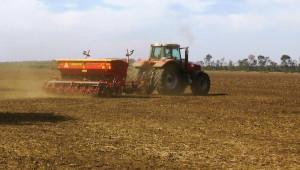 Трескава сеитба на пшеница в Добруджа